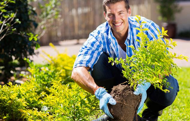 az allergiamentes kert létezhet