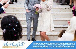 Infografika - Allergia az esküvőn - Borító