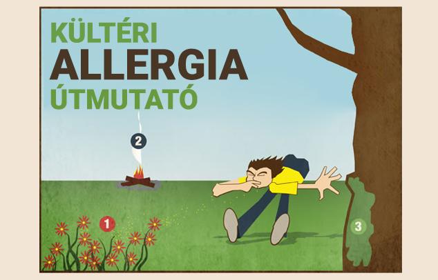 Infografika - Kültéri allergia útmutató borító